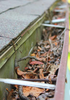Yards By Us - Gutter Cleaning Services
