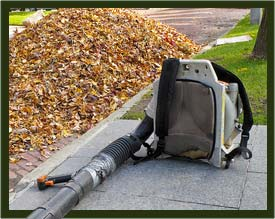 Yards By Us leaf blowing and removal